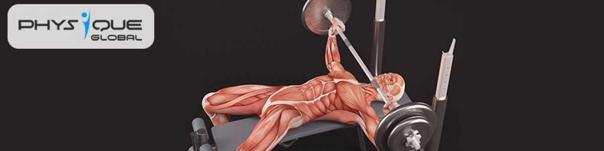 Which one is the best, Compound or isolation exercises?