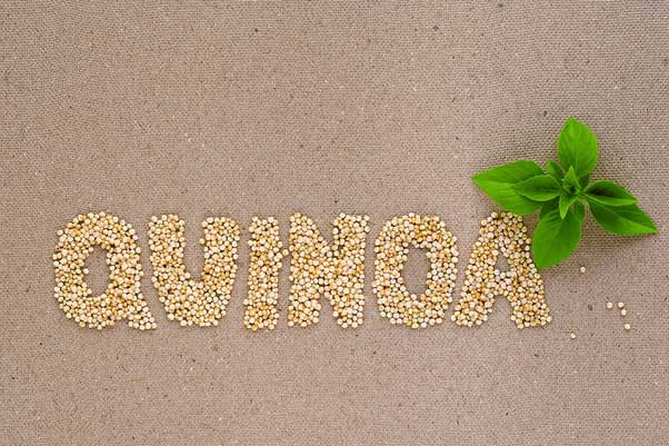 Why quinoa is a great source of complex carbs to be included in your diet.