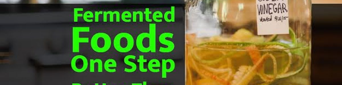 Fermented Foods: one step better than Raw