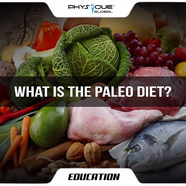 articoli di ricerca di dieta paleo